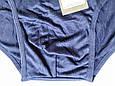 Трусы мужские бамбук плавками слипы средняя посадка синие размер 54 (4XL) Sim Corpion, фото 2
