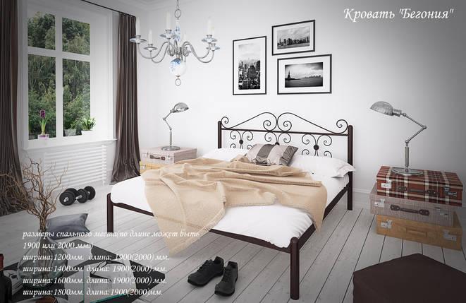 Кровать металлическая Бегония Тенеро / Tenero, фото 2
