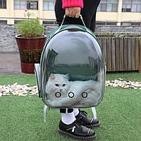Рюкзак-переноска для котов и собак   Прозрачный рюкзак для переноски животных Pet Cat кошек и собак Зеленый