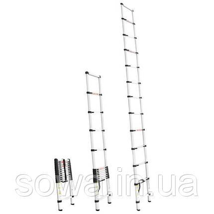 Лестница алюминиевая телескопическая INTERTOOL LT-3038 : 12 ступеней, фото 2