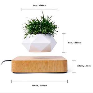 Левитирующий горшок / Летающий горшок / кашпо / горшок для растений / декор для офиса