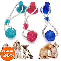 Многофункциональная игрушка для собак канат на присоске с мячом - Игры и игрушки