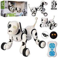 Собака Робот RC 0007 A на радиоуправлении