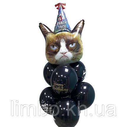 Шары с надписью для мужчины с угрюмым котом, фото 2