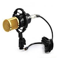 Мікрофон студійний UKC DM-800