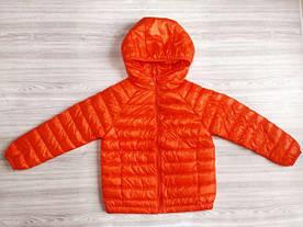 Вітровка помаранчева j0001