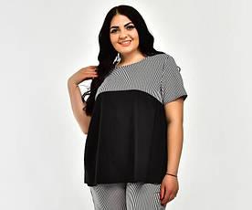Річна блузка CR-20201-3