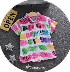 Теніска для хлопчиків кольорова 7906