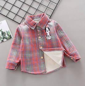 Утепленнач рубашка Dog 4982 130