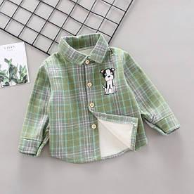 Утепленнач сорочка Dog зелена 4998 90