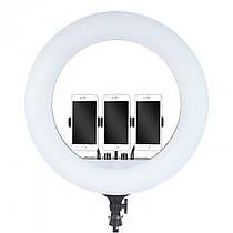 Кільцева світлодіодна лампа для фото або макіяжу RL-18 + штатив