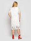 Платье большого размера Элен кружево (2 цвета), фото 6