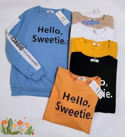 Спортивный пуловер на каждый день 44-48 (в расцветках)