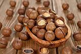 Орех Макадамия в скорлупе. Сорт высший. Дозировка 100 г, фото 6