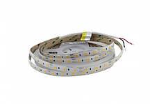 Світлодіодна стрічка  2700K 571лм 12Вт 12вольт 5050-60-IP65-WW-10-12 RD6060AA тепло біла  Рішанг 14275