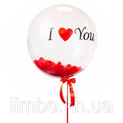 Шар bubbles (баблс) с красными перьями и надписью, фото 2