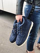Ugg David Beckham Boots (синие)