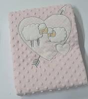 Детский плед из микрофибры Colorful Home в коробке 80x95 см Розовый