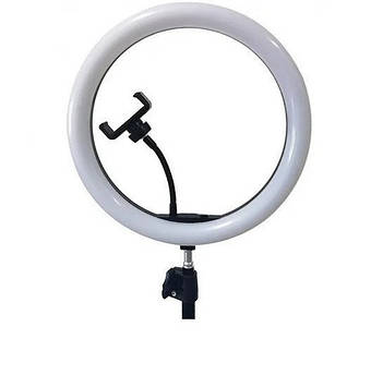 Лампа кільцева світлодіодна 30см з двома тримачами, USB №SMN-12