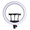 Кільцева LED лампа з пультом ДУ 3 держателя RING FILL LIGHT SLP-G500 45см