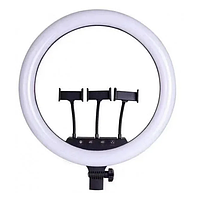 Кільцева LED лампа з пультом ДУ 3 держателя RING FILL LIGHT SLP-G500 45см, фото 1