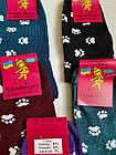 Носки женские хлопок стрейч Украина. Размер 23-25.От 10 пар по 7,50грн, фото 2