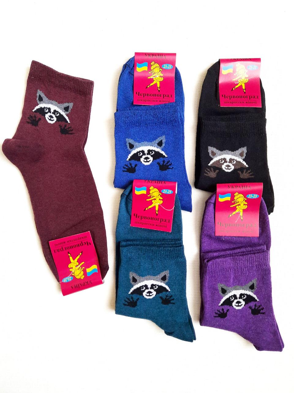 Шкарпетки жіночі бавовна стрейч Україна. Розмір 23-25.Від 10 пар по 7,50 грн