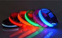 LED светящийся ошейник, лед ошейник, светодиодный ошейник для небольших собак и кошек узкий 0.5 м