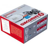 Термостатический радиаторный прямой  комплект 1/2 Giacomini R470Fx013. Купить набор  GIACOMINI 1/2 прямой.