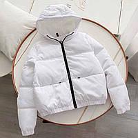 Куртка демисезонная женская с капюшоном, из матовой плащевки, на молнии (р. 42-50) 40mku605