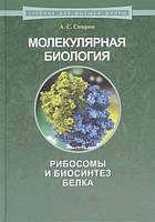 Молекулярная биология. Рибосомы и биосинтез белка : учебное пособие - Спирин А. С.