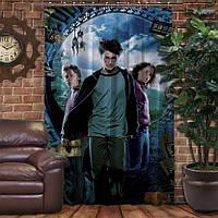 Штора с 3D принтом на тему - Гарри Поттер и Карта Мародеров, фото 1