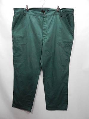 Штани чоловічі робочі Cotton Line р. 64 061DRM