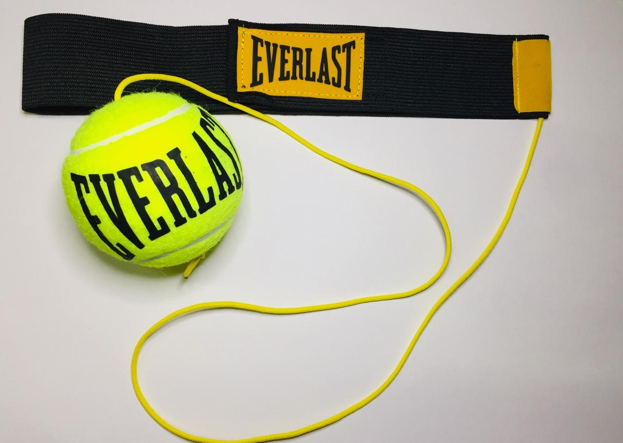 Файт бол Everlast. Fight Bal