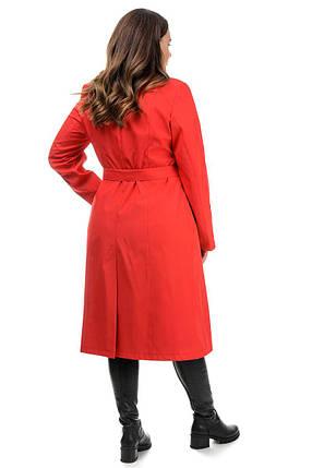 Базовий жіночий довгий плащ з плащової тканини колір яскраво-червоний, великі розміри 50-62, фото 2