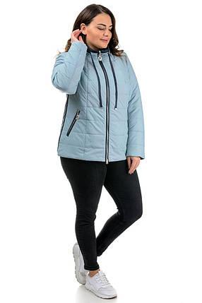 Молодіжна коротка жіноча блакитна куртка-плащівка на весну, великі розміри 50-58, фото 2