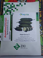 Семена огурца  Кассиус F1 / Cassius F1 (Innova Seeds), 1000 семян — партенокарпический, ранний