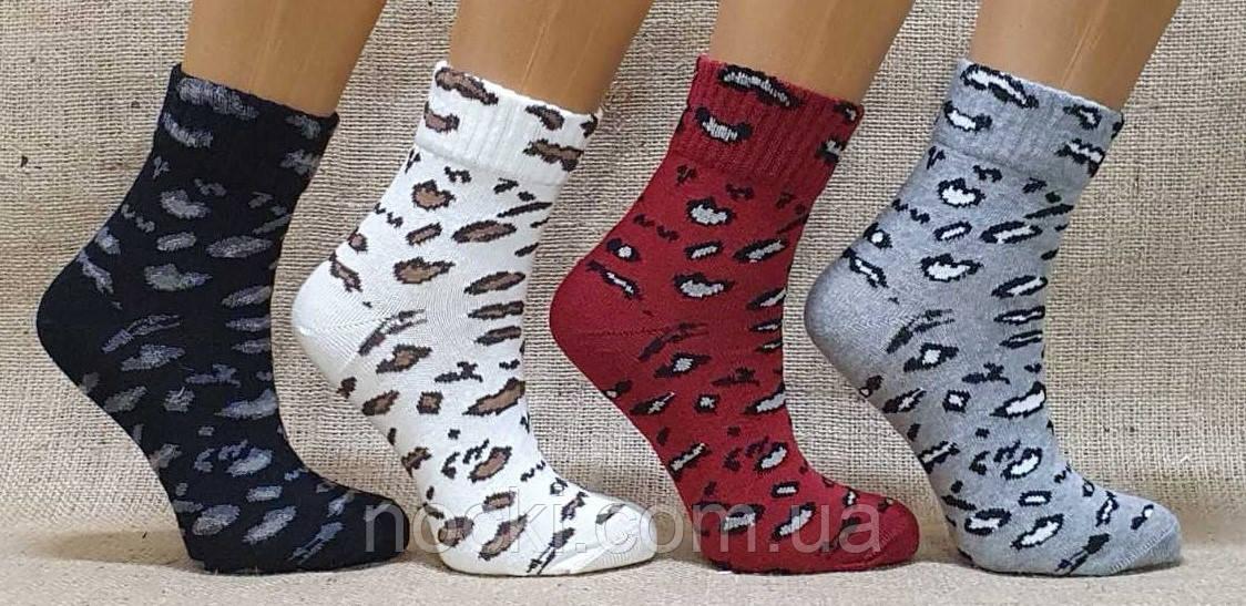 Жіночі шкарпетки середні комп'ютерні MONTEBELLO леопарди