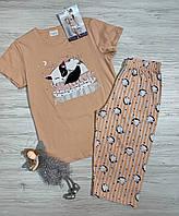Пижама со штанами капри на девочку хлопок 11-12 лет, фото 1