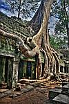 """Экскурсионный тур во Вьетнам """"Таиланд - Камбоджа - Вьетнам"""" на 15 дней / 14 ночей, фото 3"""