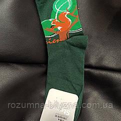 """Шкарпетки жіночі бавовна з принтом """"білочка"""". ТМ Steven 38-40"""