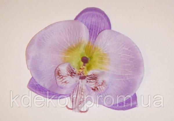 Орхідея-квітка для декору