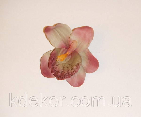 Цветок №  51
