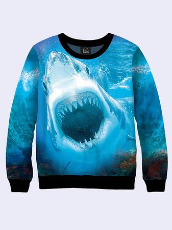 Чоловічий Світшот Паща Акули