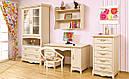 Комод з ДСП/МДФ в спальню, вітальню, дитячу 60 клен Селіна Світ Меблів, фото 2