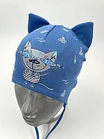 ОПТ, трикотажна шапочка для хлопчика з зав'язками «Кіт з рибою», фото 1