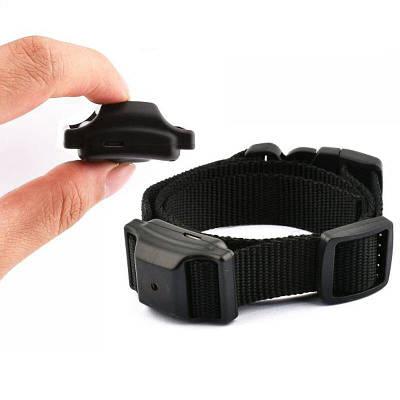 Ошейник антилай для маленьких собак аккумуляторный DOBE PET68B со звуком и вибрацией