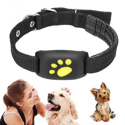 GPS трекер для собак или котов - ошейник Pet Tracker Z8, влагозащищённый, аккумуляторный