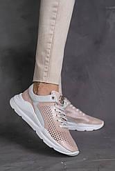 Женские кроссовки кожаные летние розовые Alex Benz 2001 Перфорация пудра