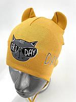 ОПТ, трикотажна шапочка для хлопчика з зав'язками «Cat Friday»